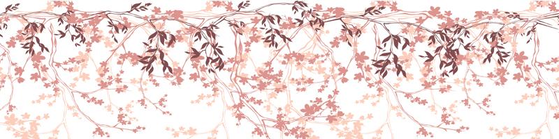 Sakura_blossom_panoraam_veeb